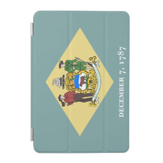 Delaware Flag iPad Mini Cover