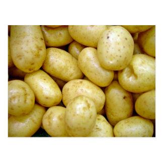 Delaware potatoe postcard