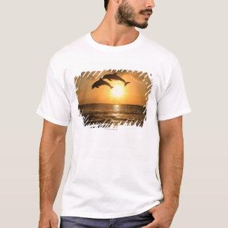 Delfin,Delphin,Grosser Tuemmler,Tursiops T-Shirt