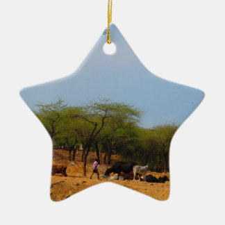Delhi Metro development  animals natives to brink Ceramic Star Ornament