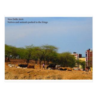 Delhi Metro development  animals natives to brink Postcard