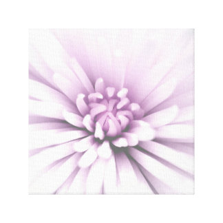 Delicate blooming flower canvas print