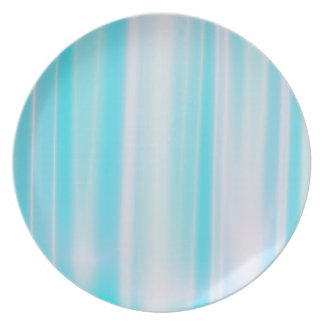 Delicate Blue Striped Dinner Plates