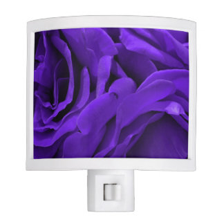 Delicate bright purple roses floral photo nite lite