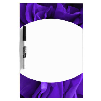Delicate bright purple roses flower photo dry erase board