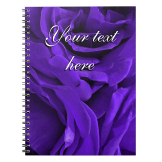 Delicate bright purple roses flower photo notebook