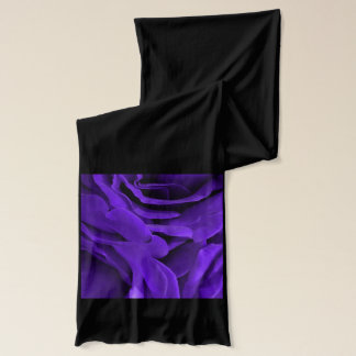 Delicate bright purple roses flower photo scarf