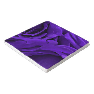 Delicate bright purple roses flower photo trivet