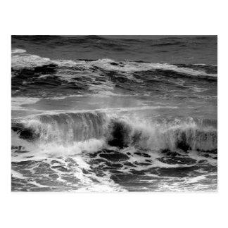 Delicate Curling Waves in Monochrome Postcard