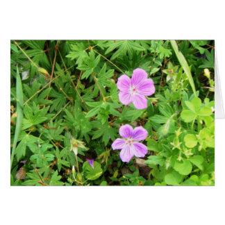 """Delicate Geraniums"" Card"