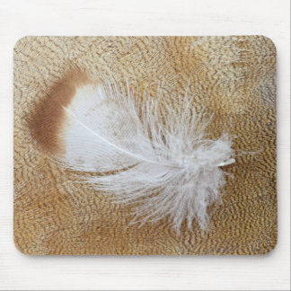 Delicate Goose Feathers Mouse Pad