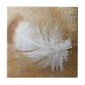 Delicate Goose Feathers Tile