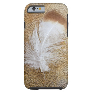Delicate Goose Feathers Tough iPhone 6 Case
