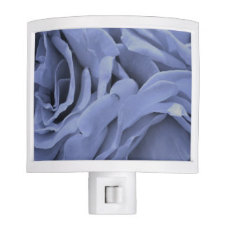 Delicate light blue gray roses flower photo night lights