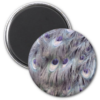 Delicate Old Gray 2 Inch Round Magnet