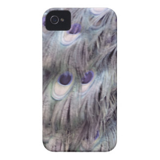 Delicate Old Gray iPhone 4 Case