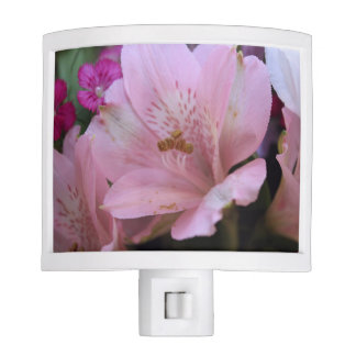 DELICATE PINK FLOWERS NIGHTLIGHT NIGHT LIGHT