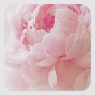 Delicate Pink Peony Stickers