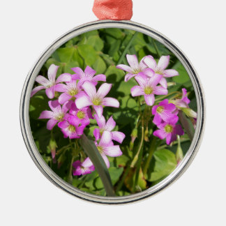 Delicate pink Spring wildflowers Metal Ornament