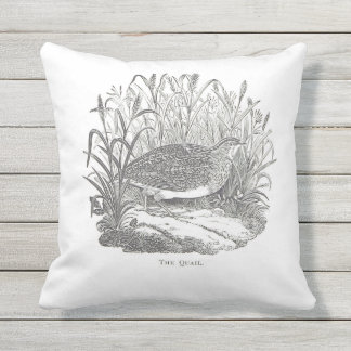 Delicate Quail Vintage-print Outdoor Pillow