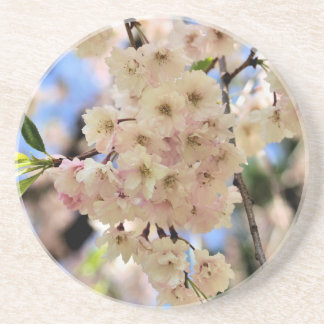 Delicate Spring Blossoms Floral Coaster