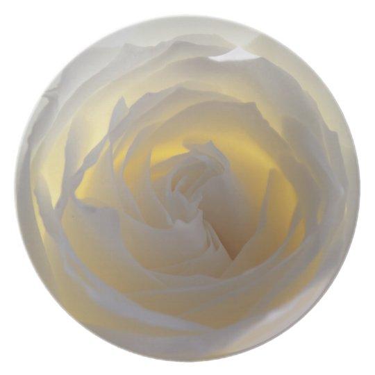 Delicate White Rose Photograph Plate