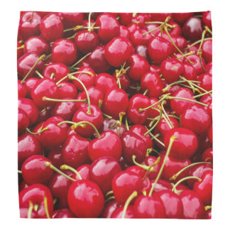delicious cute red cherry fruits photograph bandana