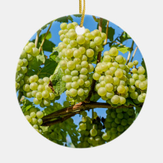 Delicious growing green grapes bunch & blue sky ceramic ornament