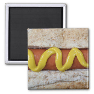 delicious hot dog with mustard photograph magnet