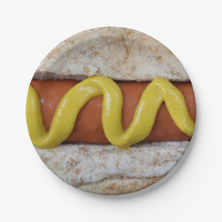delicious hot dog with mustard photograph paper plate