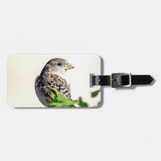 Delightful Bird Photograph Bag Tag