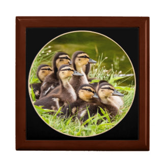Delightful Ducklings Gift Box