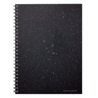 Delphinus Notebooks