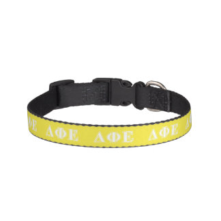 Delta Phi Epsilon White and Yellow Letters Pet Collar