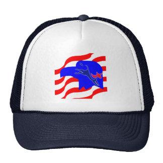 Democrat Party Hat