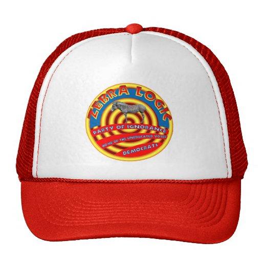 Democrat Party Hat.