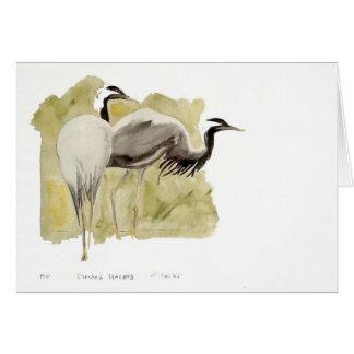 Demoiselle Cranes Card