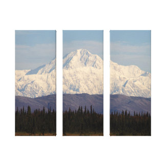 Denali in the Morning Canvas Print