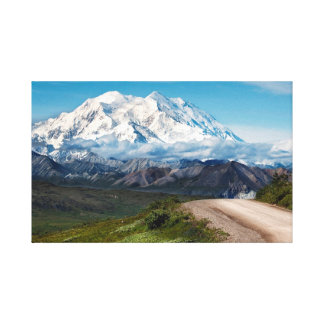 Denali Mountain Canvas Print