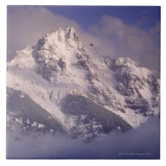 Denali mountain range, Alaska Tile