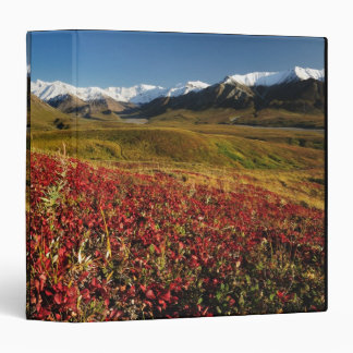 Denali National Park 3 Ring Binder