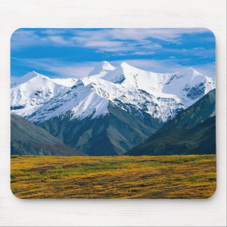 Denali National Park mousepad