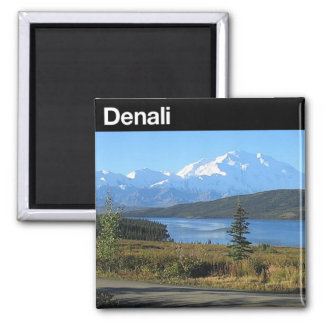 Denali National Park Square Magnet