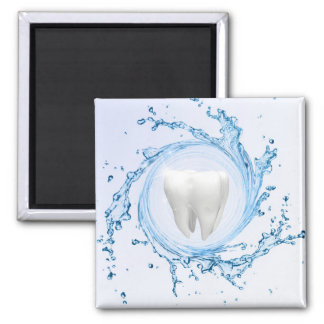 Dentist Medical Tooth Professional - Magnet