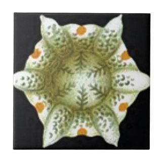 depth of the white flower tile