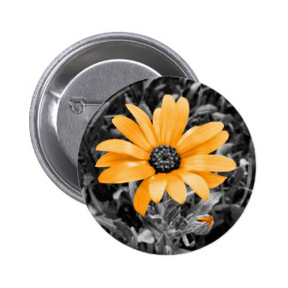 Desaturated Spring Flash African Daisy Photograph 2 Inch Round Button