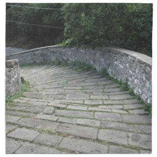Descent stone walkway of medieval bridge printed napkins