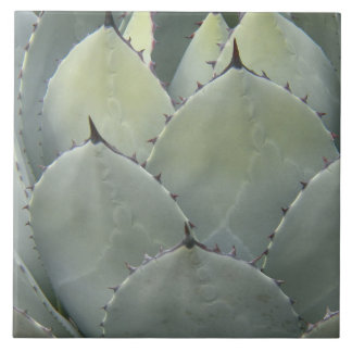 Desert Agave Plant Floral Tile