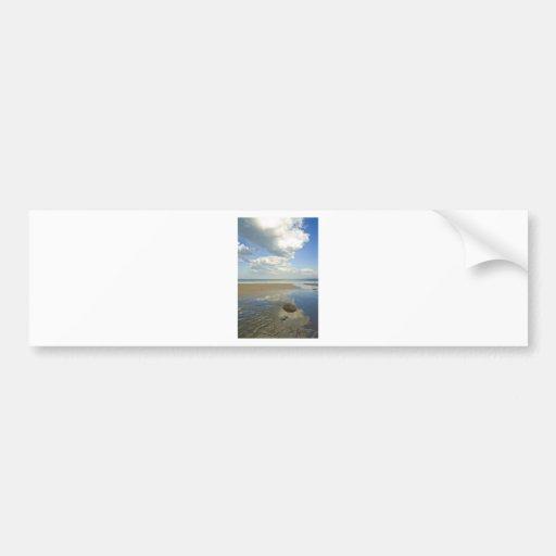 Desert beach bumper sticker