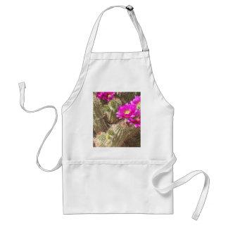 Desert bloom aprons
